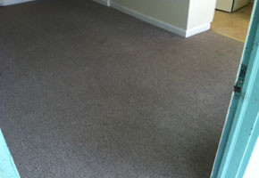 How Often Should I Get My Carpets Cleaned I Only Get Mine Deep Cleaned When There Is A Serious Spill How To Clean Carpet Carpet Care Floor Cleaning Services