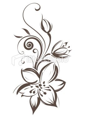 vector flower isolated on white background rimarnia