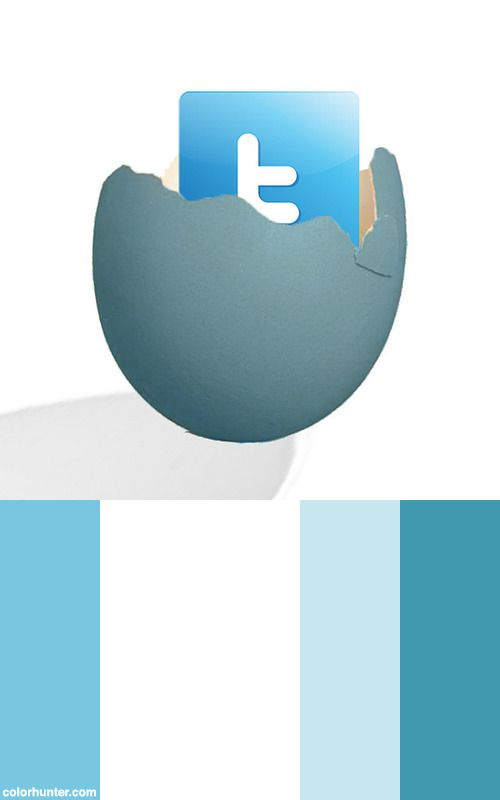 Emerging+Media+-+Twitter+Icon+Color+Scheme