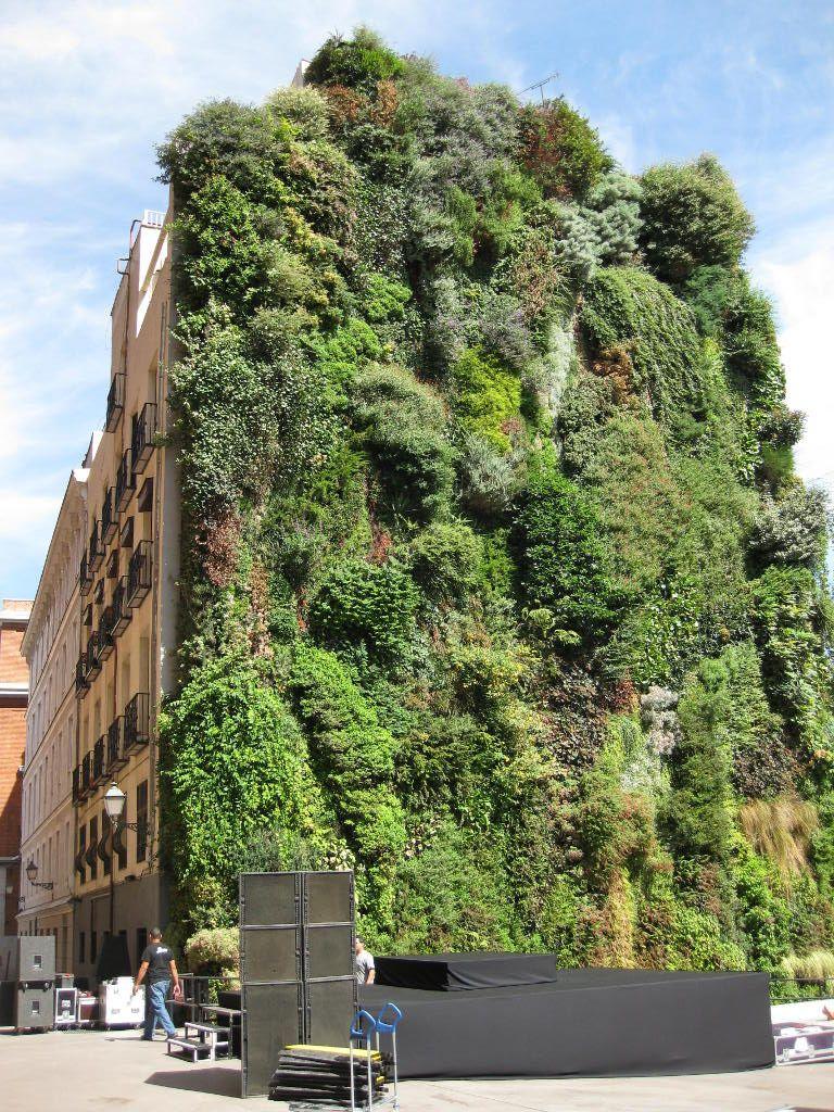 Patrick blanc 39 s vertical garden in madrid spain para for Jardin vertical madrid