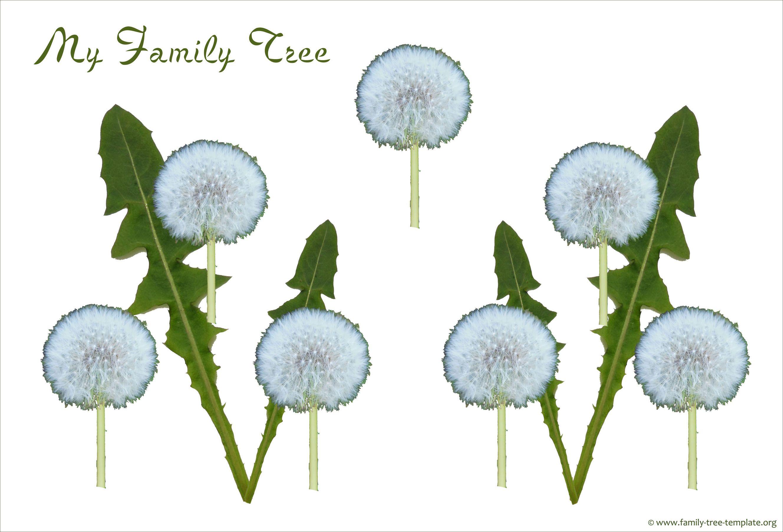 Free 3 Generation Kid Family Tree Lee In 2019 Family Tree