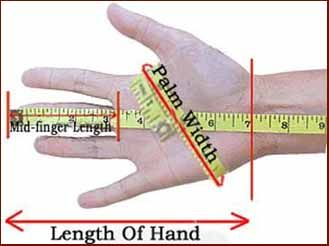Stolen penis length hand size pictures fox