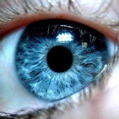 The bluest eye?