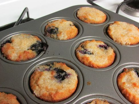 Paleo lemon+blueberry muffins, made with coconut flour