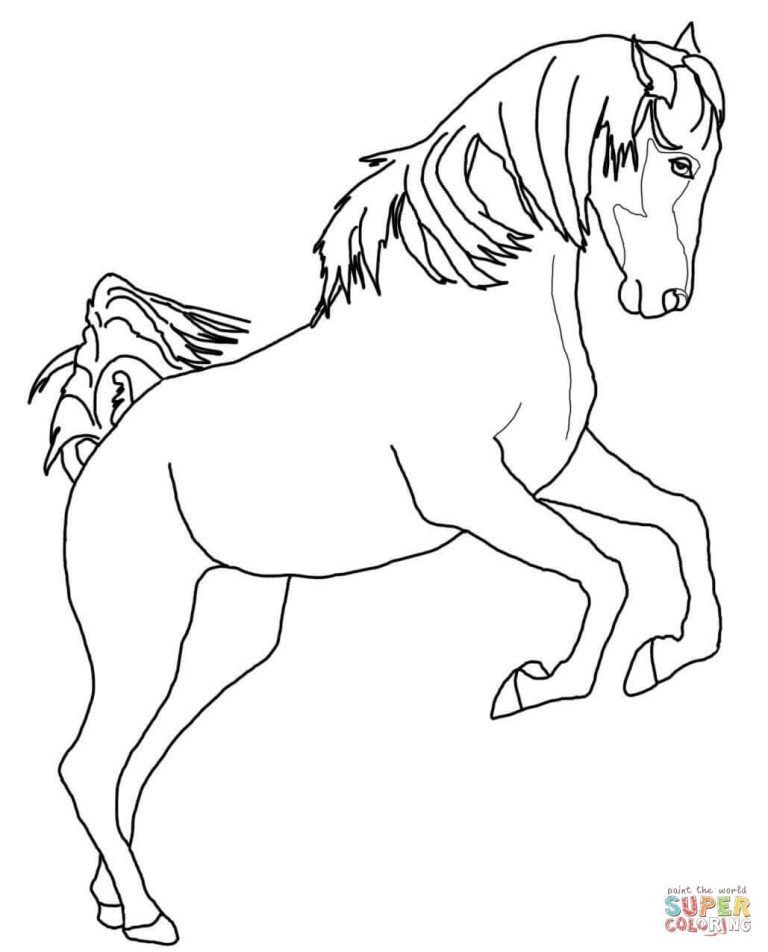 Rearing Arabian Horse Coloring Page Horse Coloring Horse Coloring Books Horse Coloring Pages
