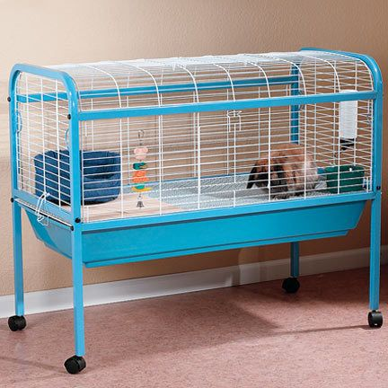 Pin On Guinea Pig Cage