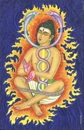 As the deity assigned to Ashlesha is Ahi, the serpent of