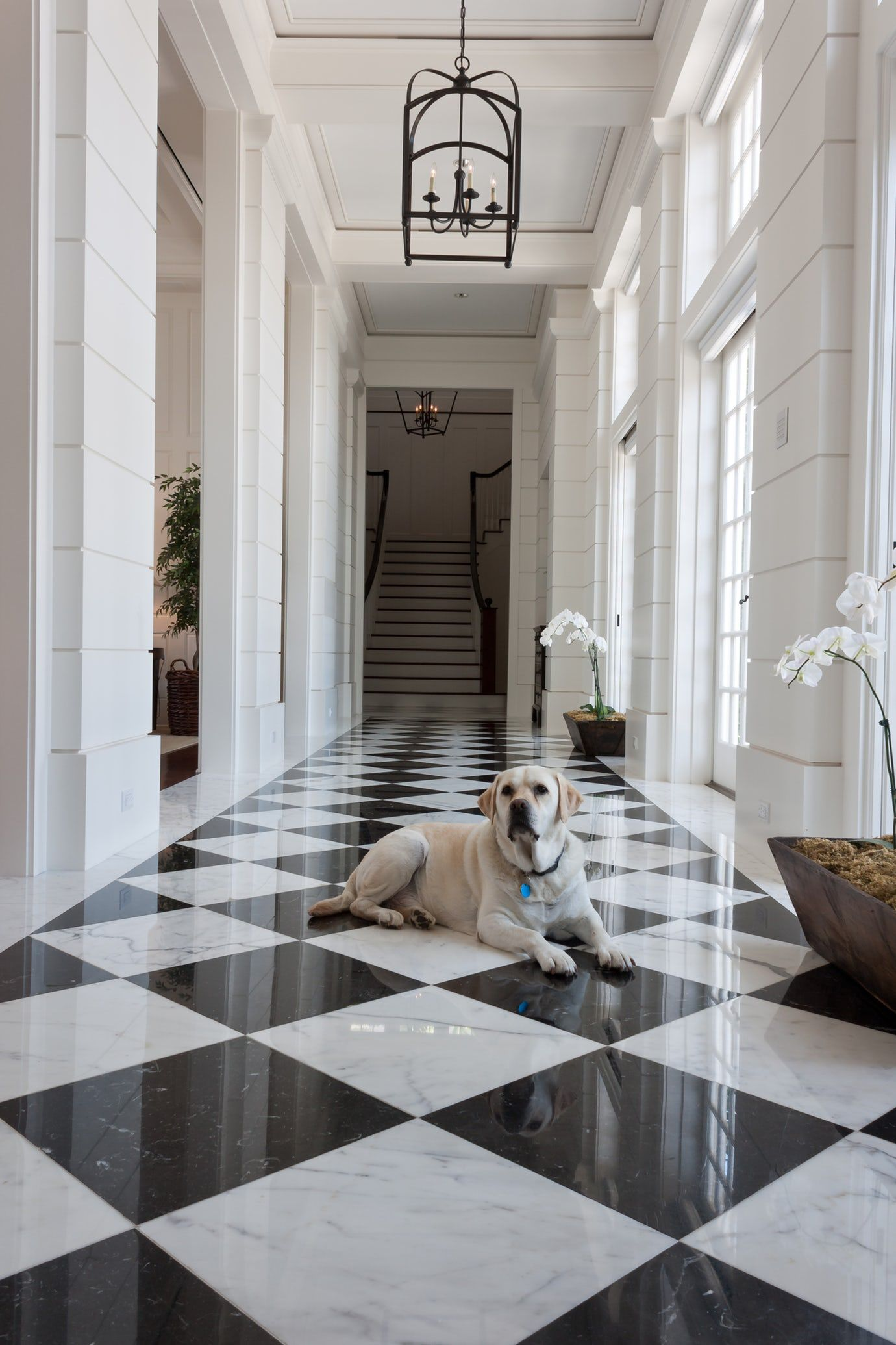 Formal Black And White Marble Entry Foyer Transitional Traditional By Jill Shevlin Design White Marble Floor Marble House Black And White Hallway