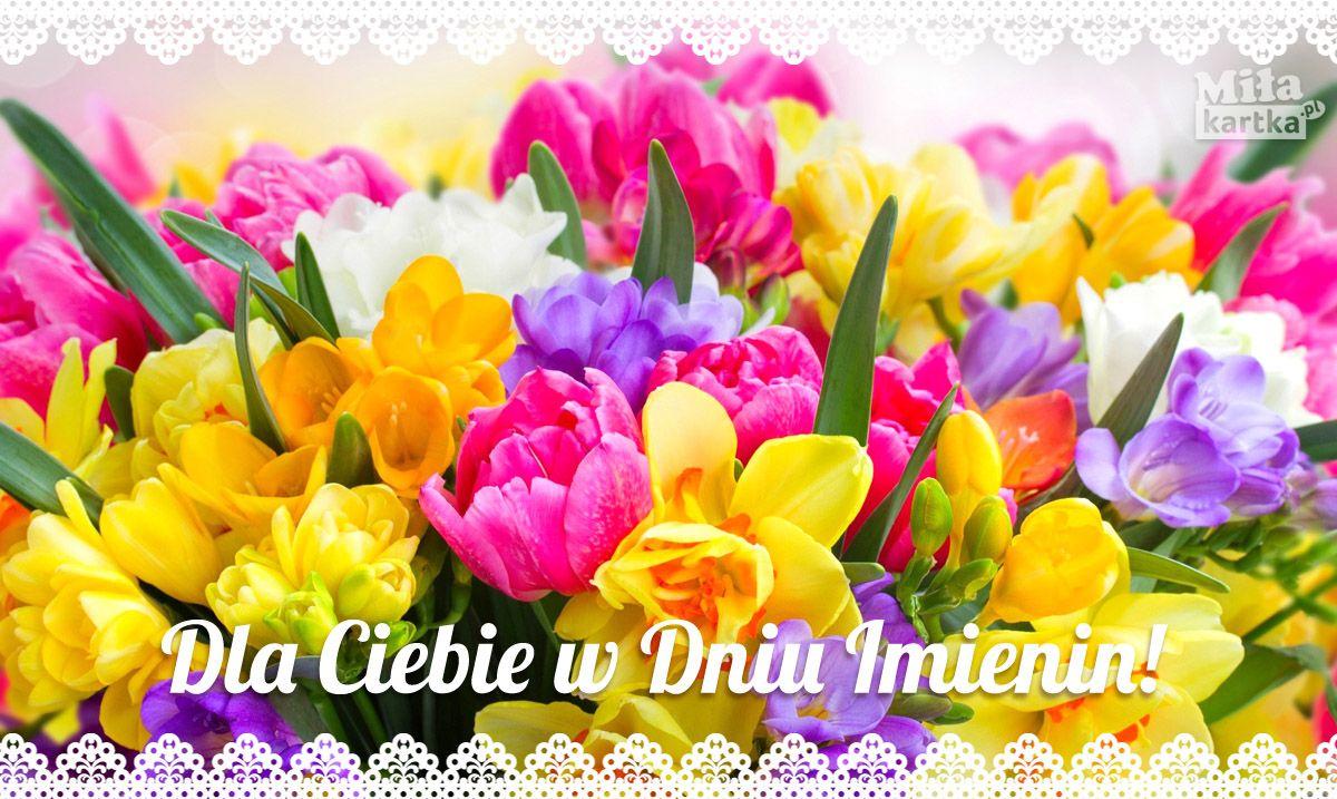 Dla Ciebie W Dniu Imienin Imieniny Nameday Name Swieto Zyczenia Kwiaty Tul Flower Desktop Wallpaper Spring Flowers Wallpaper Spring Flowers Background