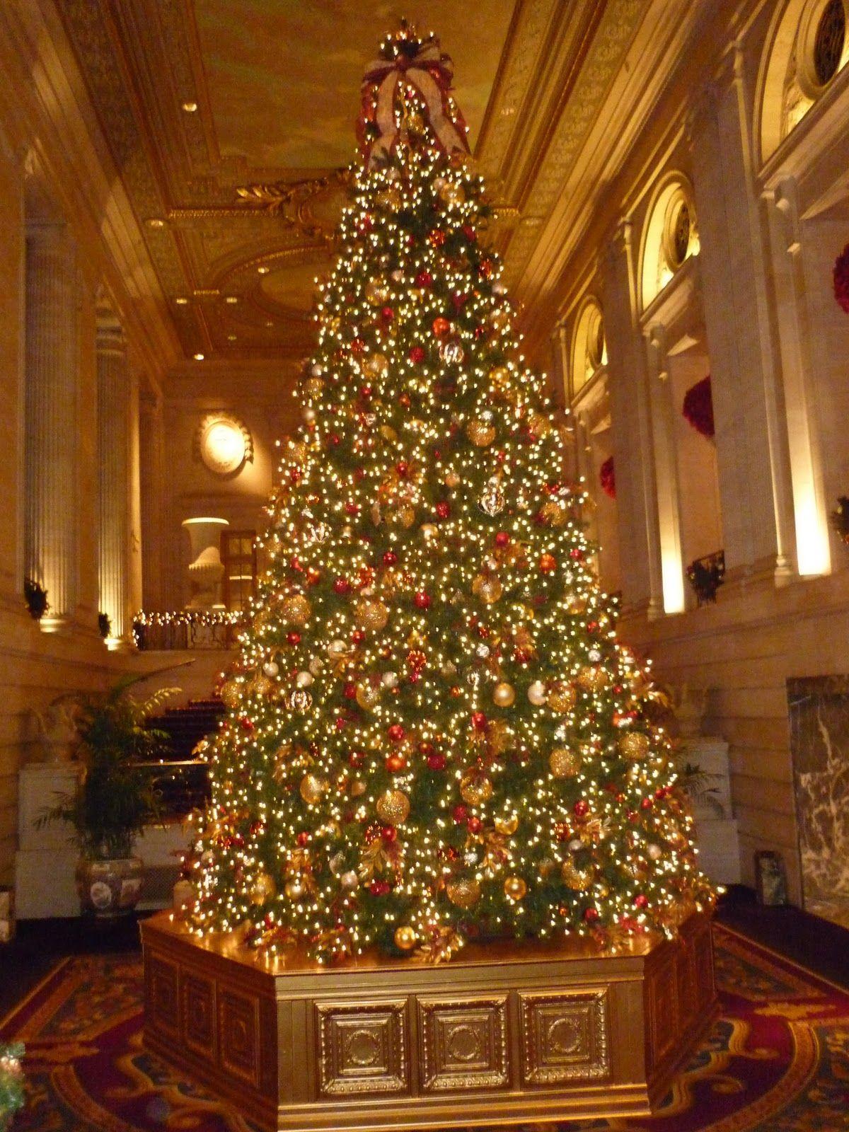 Chicago Hilton & Towers Christmas Tree | Diy christmas ...