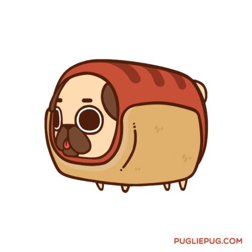 Hot Pug Cute Kawaii Animals Cute Animal Drawings Cute Drawings