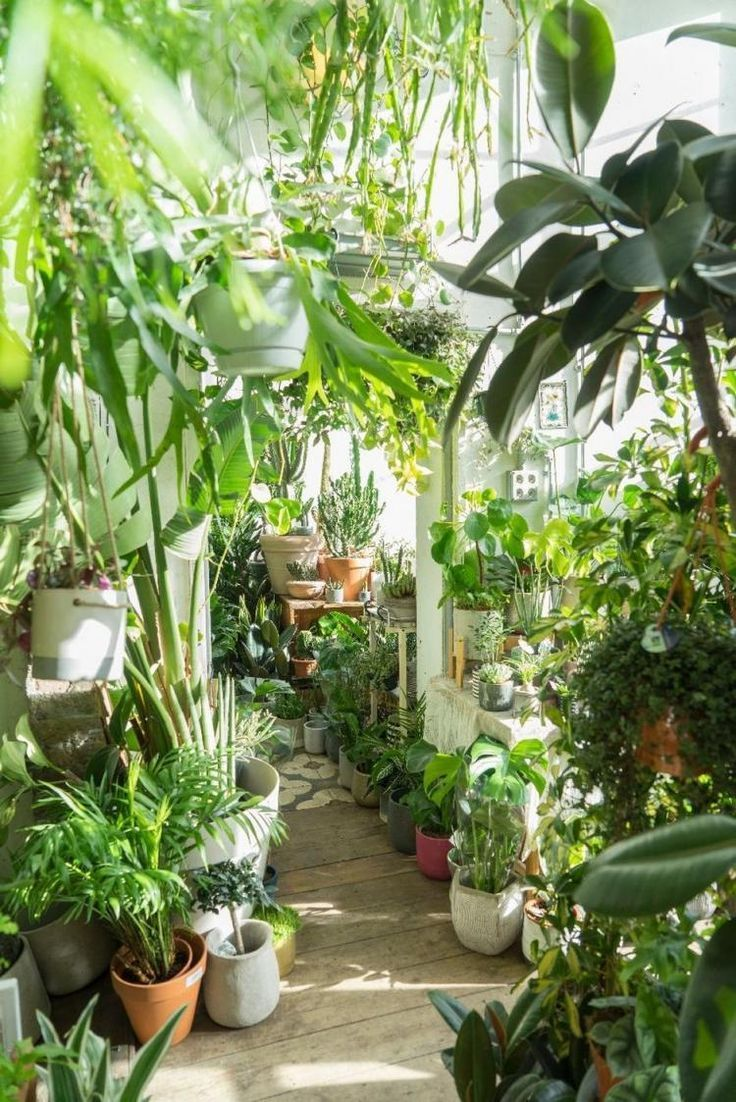 65+ AWESOME HOME INDOOR JUNGLE-DESIGN-IDEE - -
