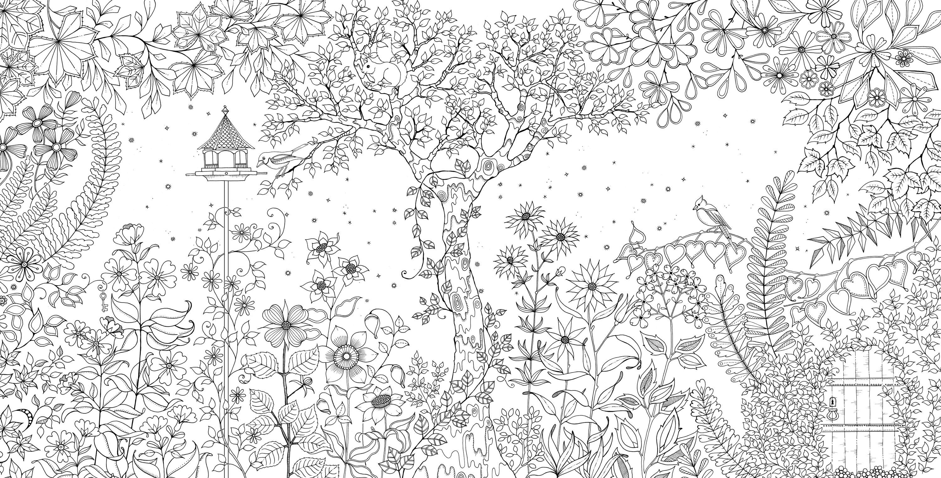 Colouring Books Created By Johanna Basford Secret Garden And Enchanted Forest Are Topping The Amazon Best Seller List Description From