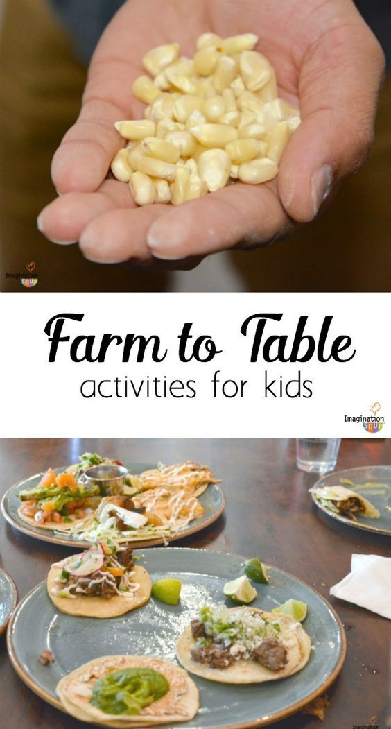 5 Fun Farm To Table Activities For Kids Agriculture Education Activities Nutrition Activities Agriculture Education