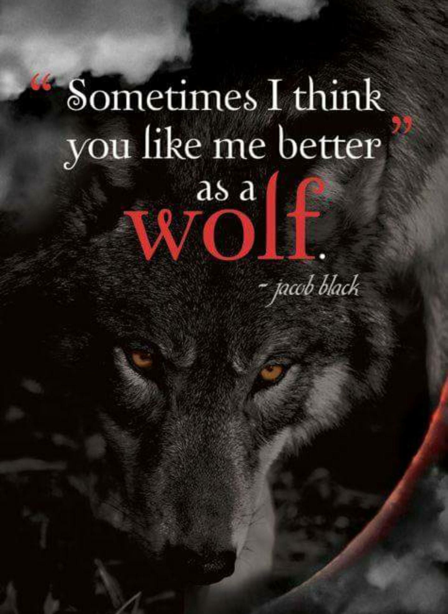 Pin by Mayrin Leon on Wolf quotes Twilight quotes