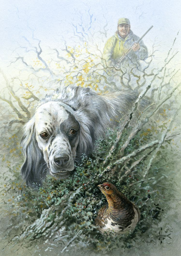 How To Choose The Right Bow For Hunting Art Animalier Chien Setter Anglais