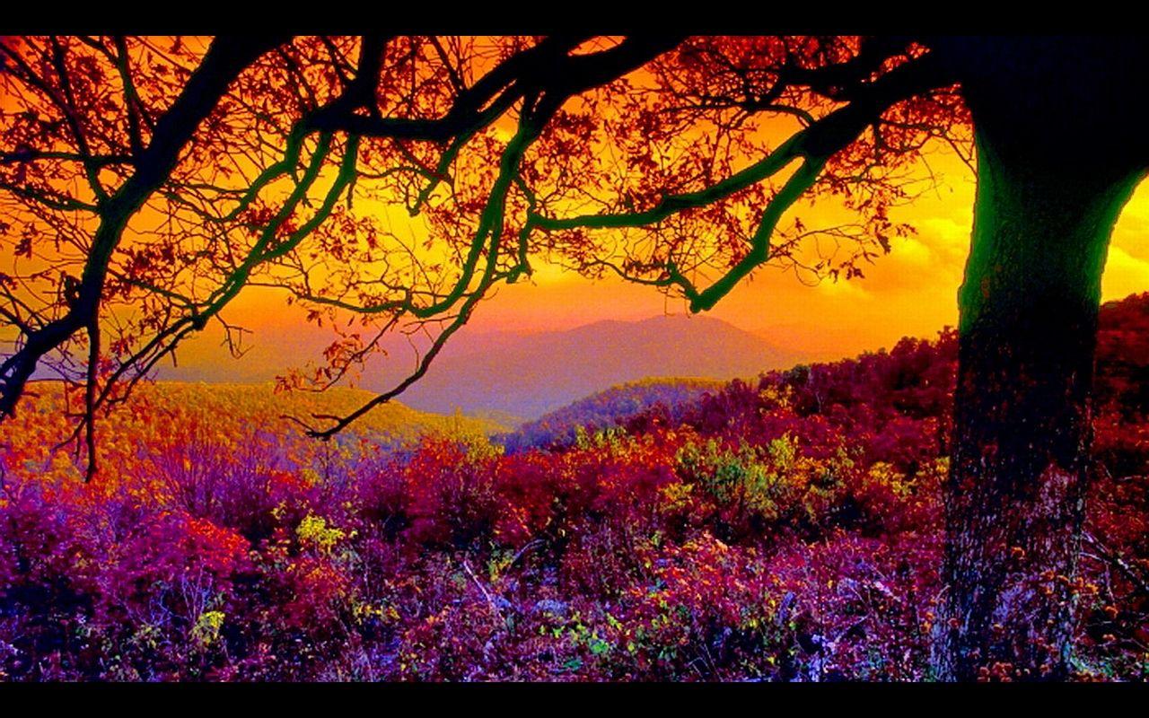 free scenic wallpapers for desktop wallpaper wallpapers