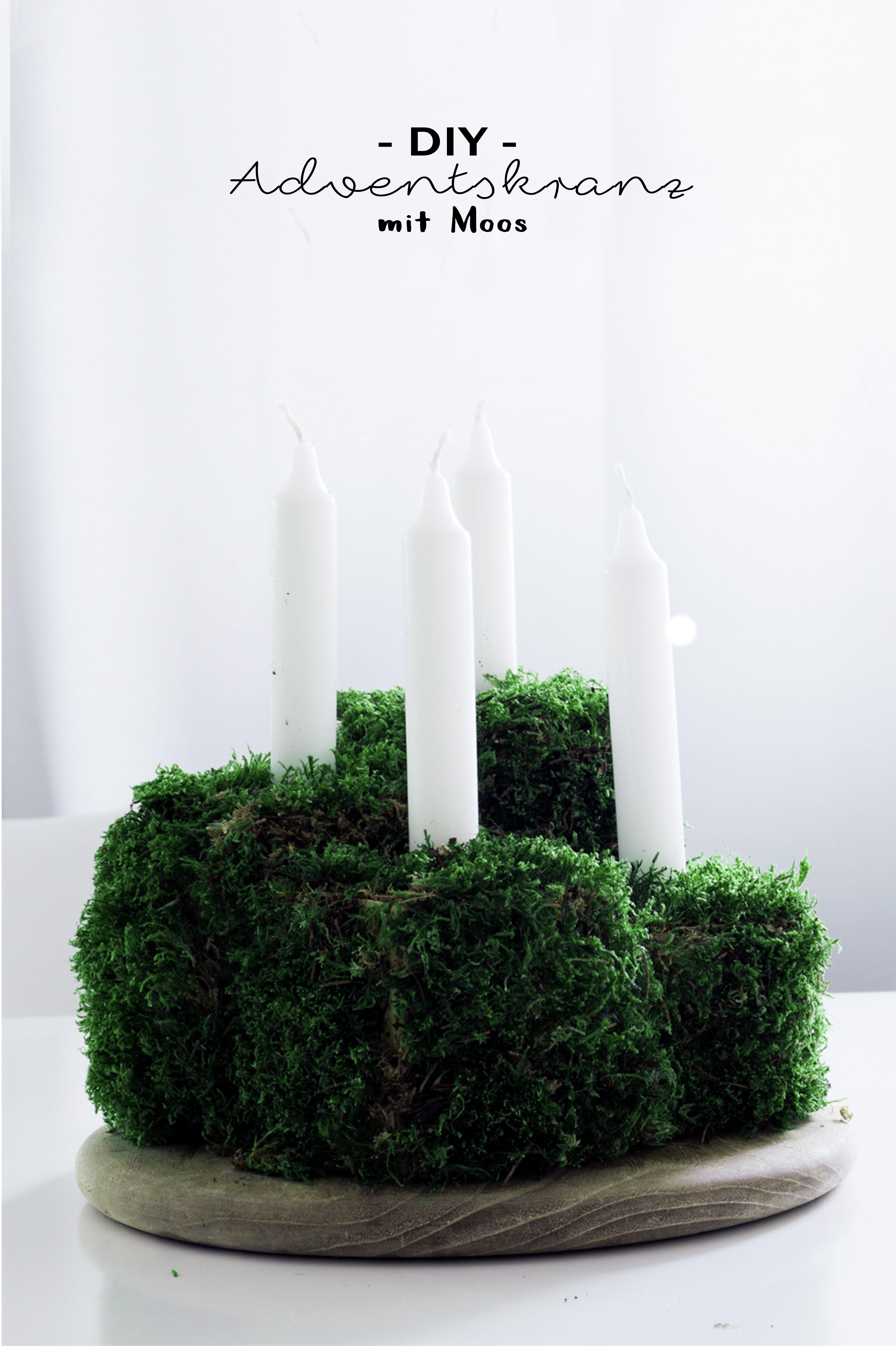 Diy Idee Für Weihnachten Adventskranz Aus Moos Selber Machen Basteln Den Advent Christmas Decoration Deko Ideen Grün