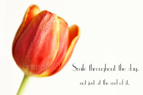 smile quote tulip photography spring bloom by