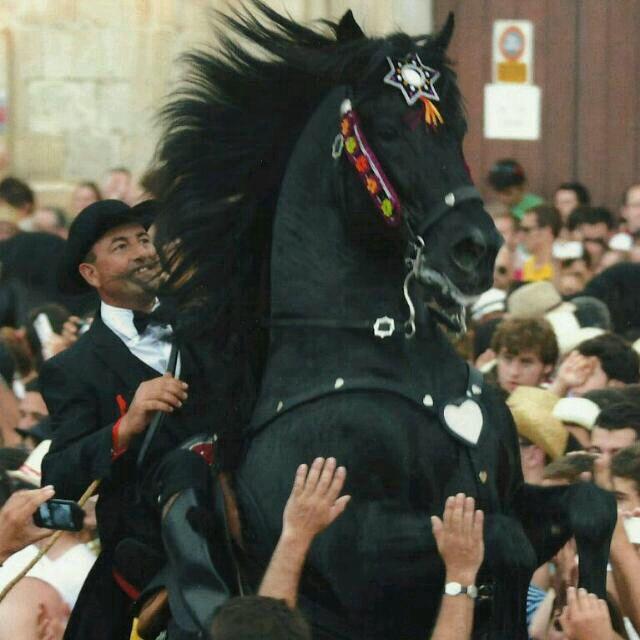 Fiestas de San Juan Ciudadela de Menorca 2014. Caixer Pagés Pau Bosch Salord.