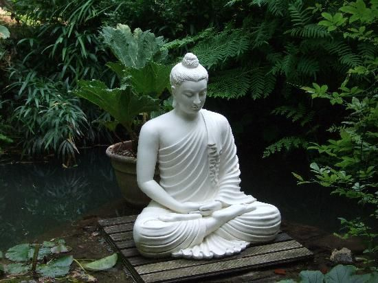 Charming Garden Buddha Statues Are Considered As The Objects Of Great Importance  Spiritually While They Beautify The Surroundings With Serene Nature In  Outdoor