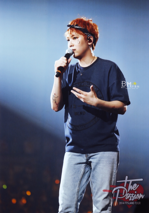 2014 FT Island arena tour The Passion