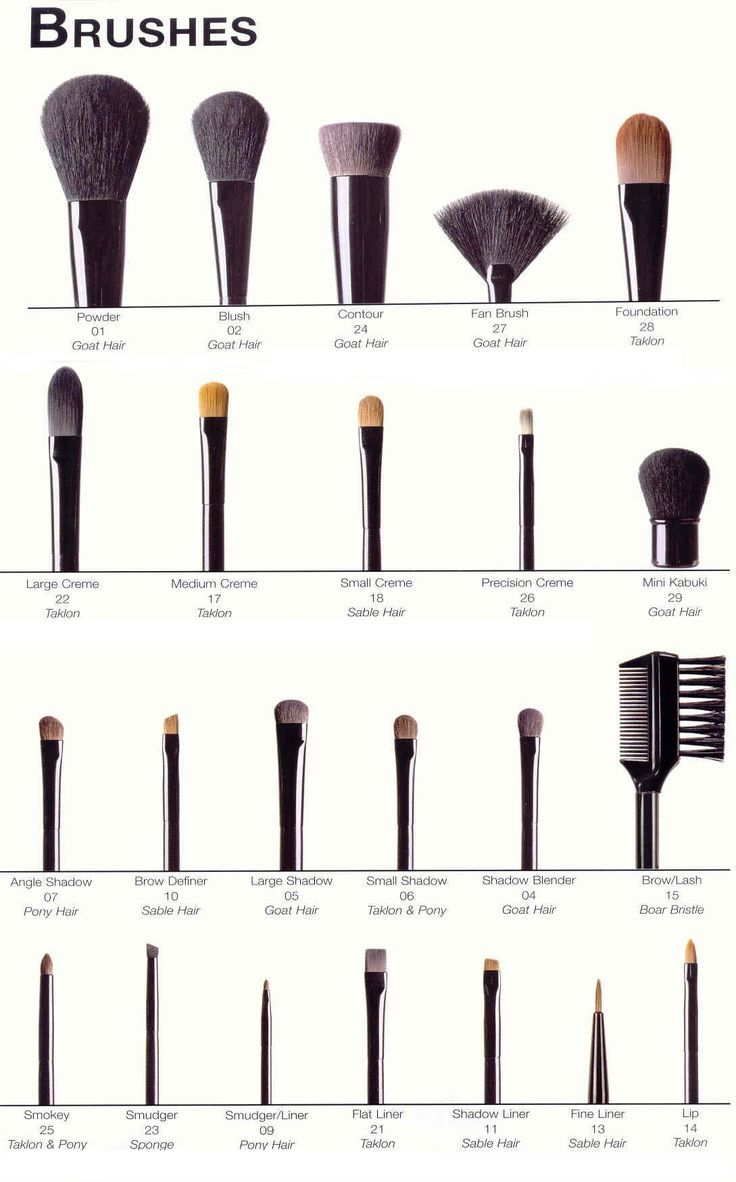 A Complete Picture Guide To Beauty Make Up Brushes - DIY