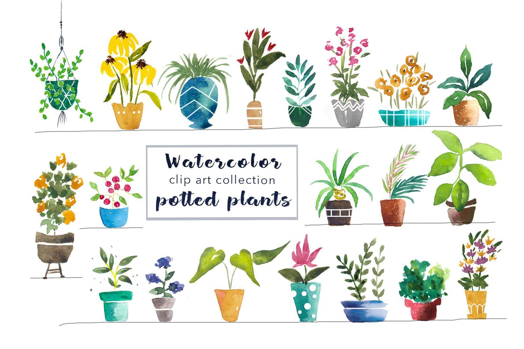 Watercolor Potted Plants Clip Art Plant Clips Clip Art