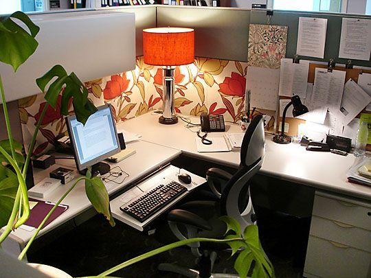 Office Cubicle Decor interesting office cubicle decoration ornamental plants | at work