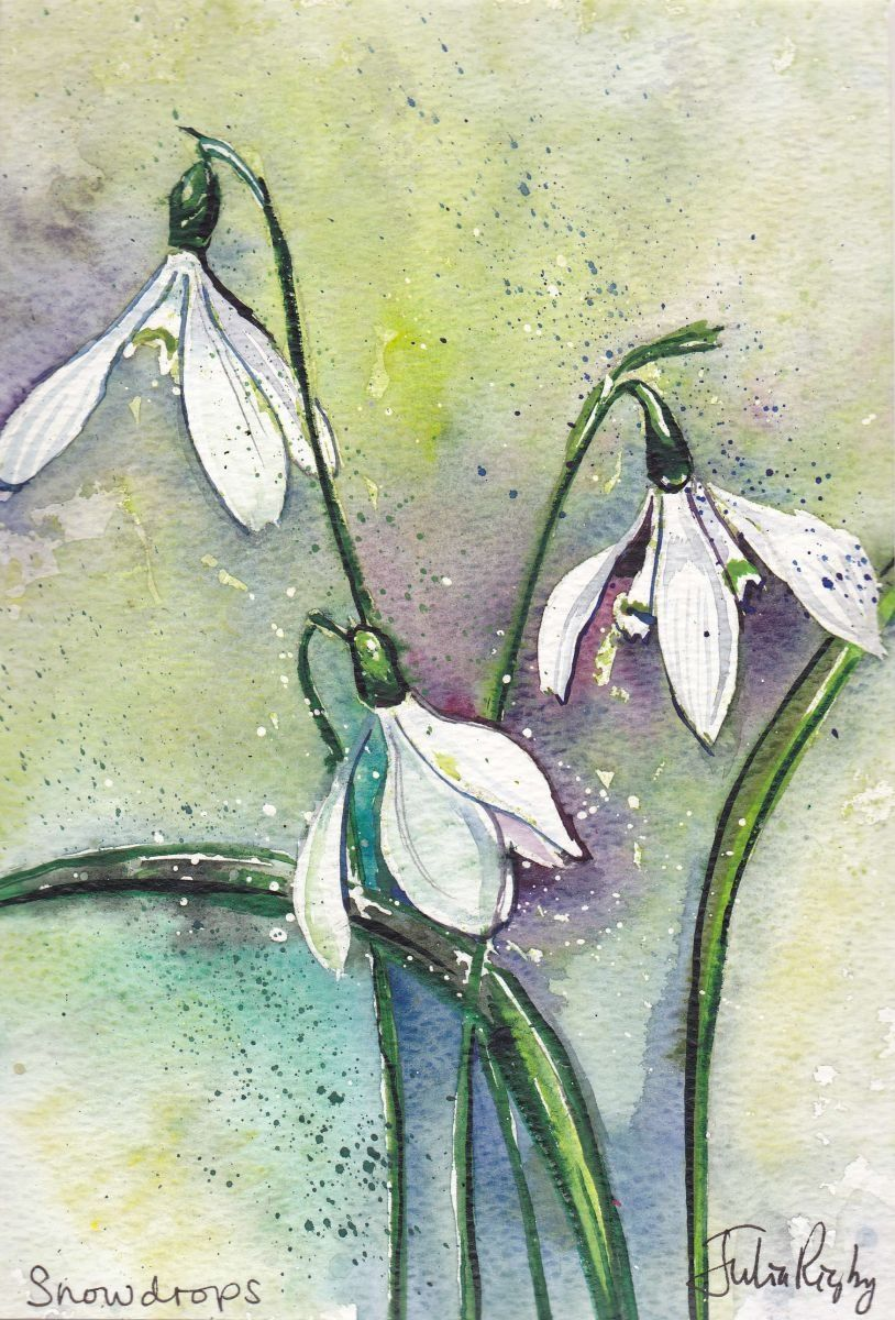 Snowdrops, Watercolours by Julia Rigby   Artfinder   cool ...