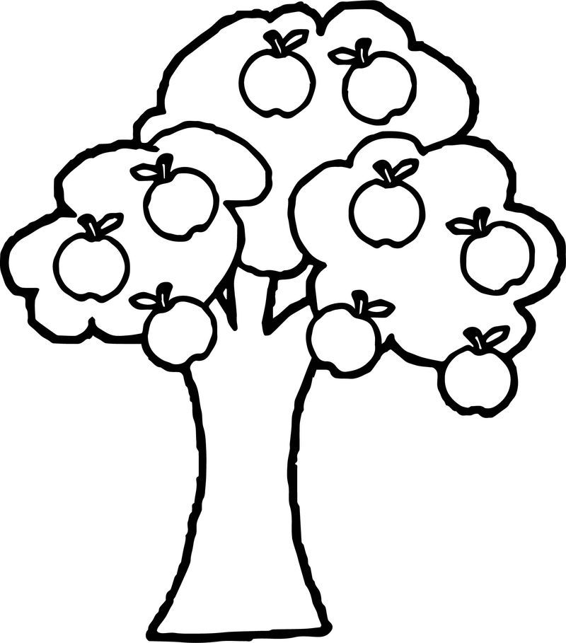 New Apple Tree Coloring Page Apple Coloring Pages Tree Coloring Page Fruit Coloring Pages