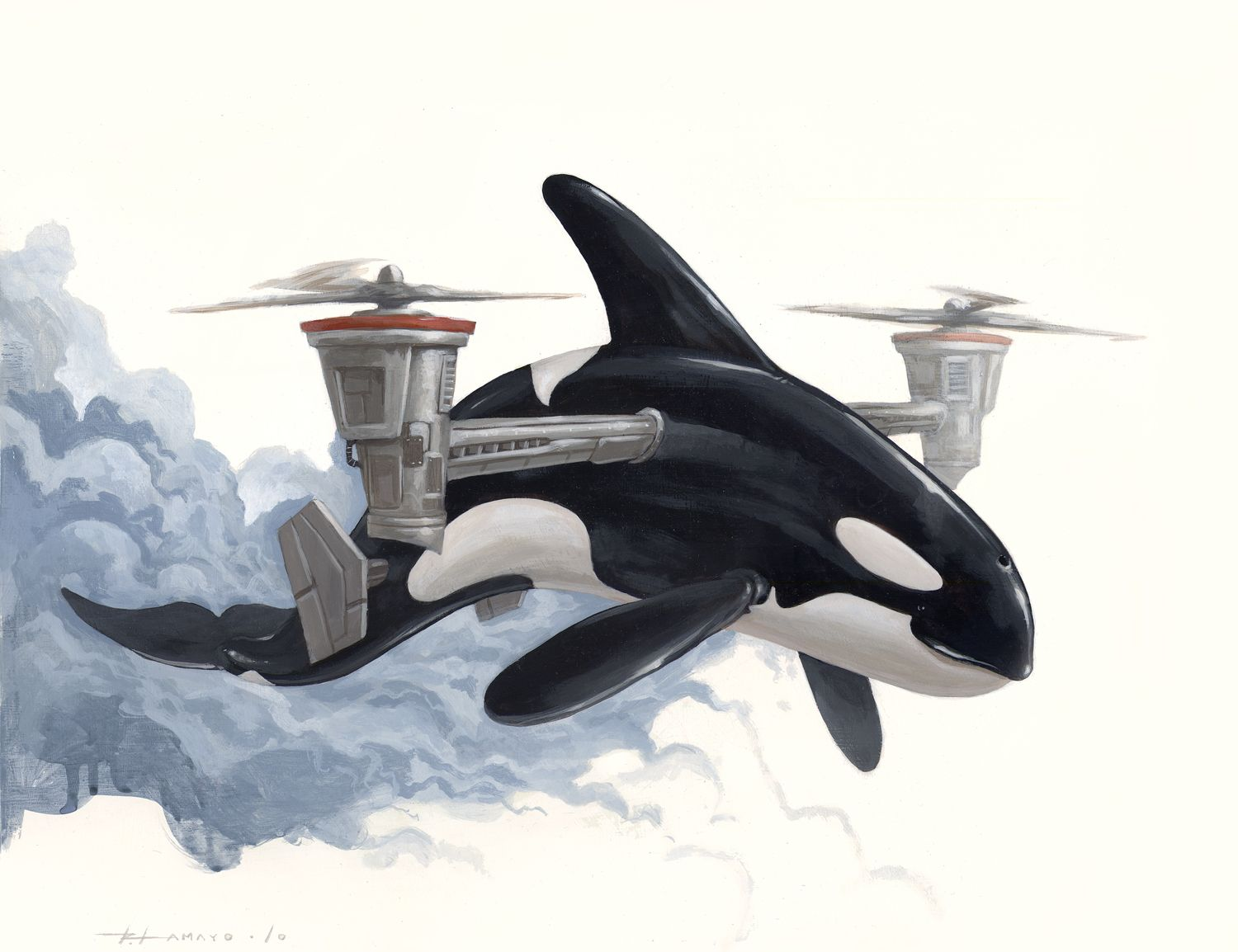 helicopter killer whale by roland tamayo killer whales i
