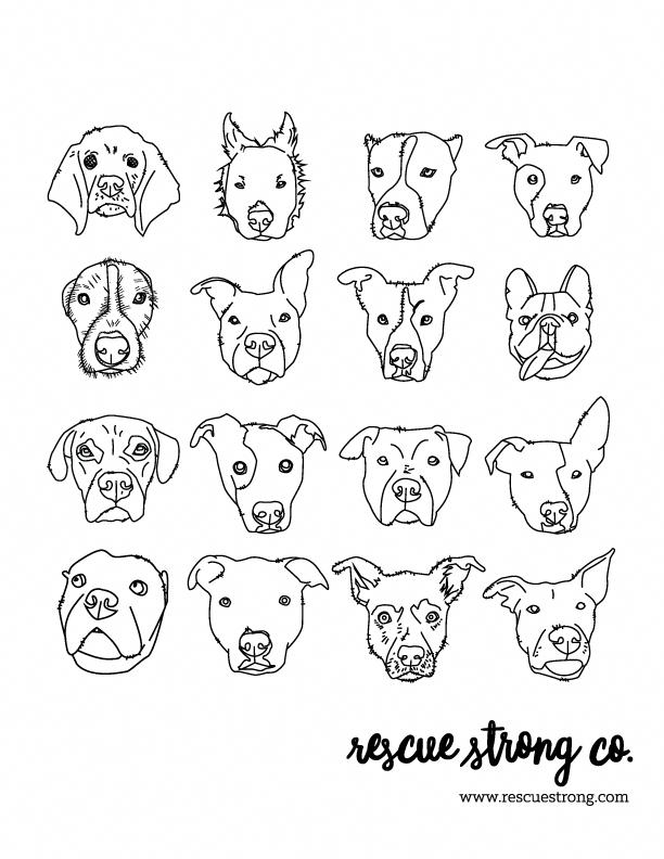 Boston Terrier Dog Face Free Halloween Pumpkin Carving Stencil Design Template Pattern Pumpkin Carvings Stencils Pumpkin Stencil Bulldog Drawing