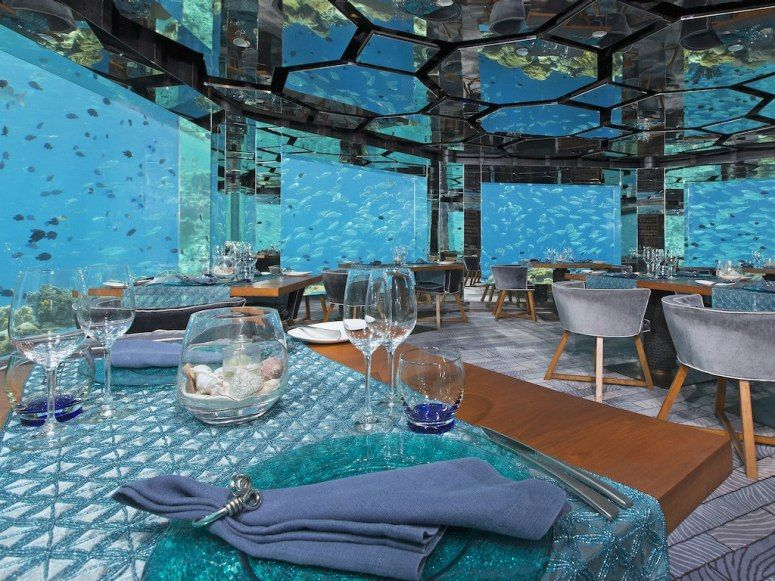 underwater restaurant disney world. 7 underwater restaurants and bars around the world how would you like to sip a cocktail restaurant disney
