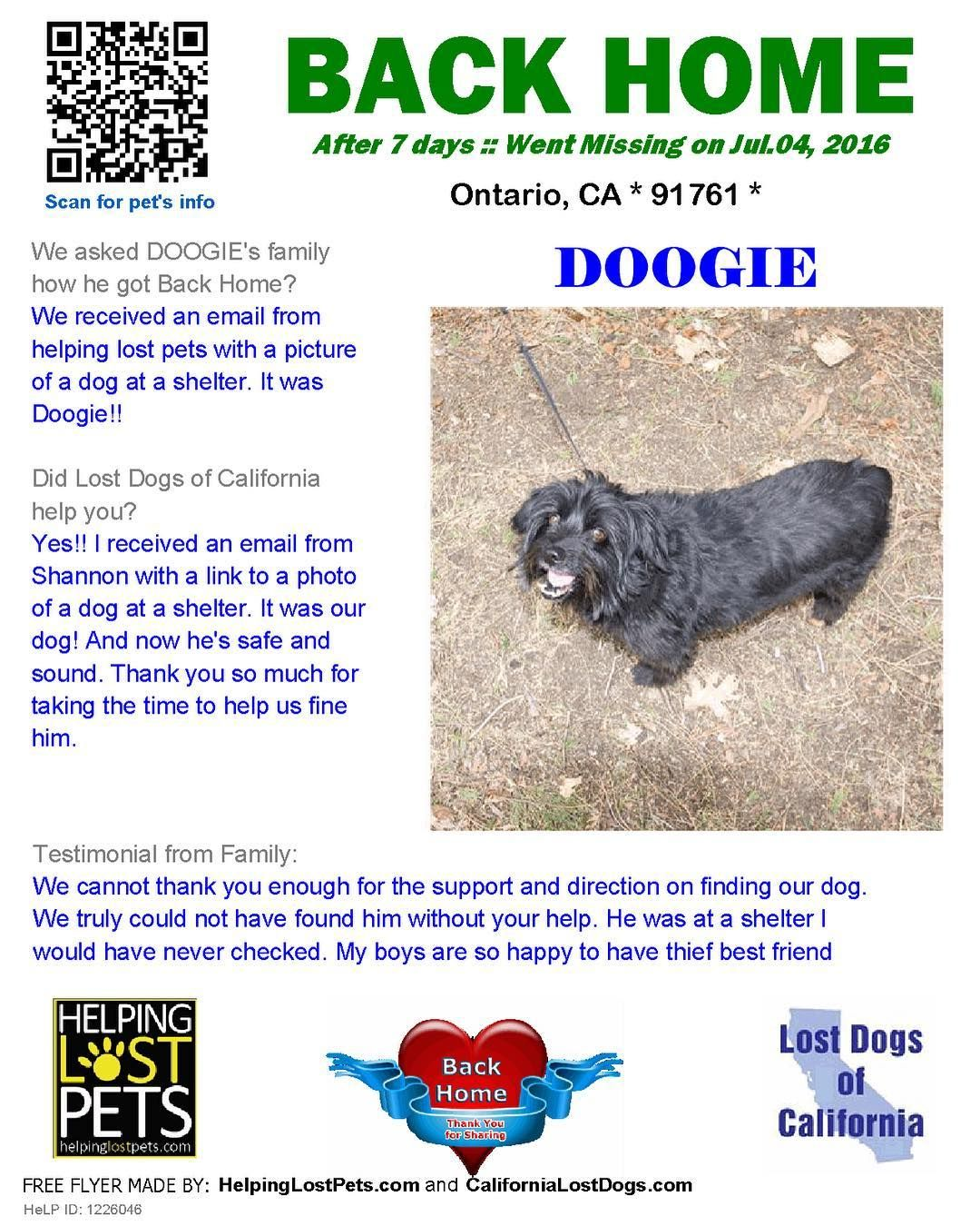 Backhome Doogie Spaniel Mix From Ontario Ca Has Been Reunited With His Family Lost Jul 04 2016 Back Home Jul 11 2016 With Images Losing A Dog Losing A Pet Dogs