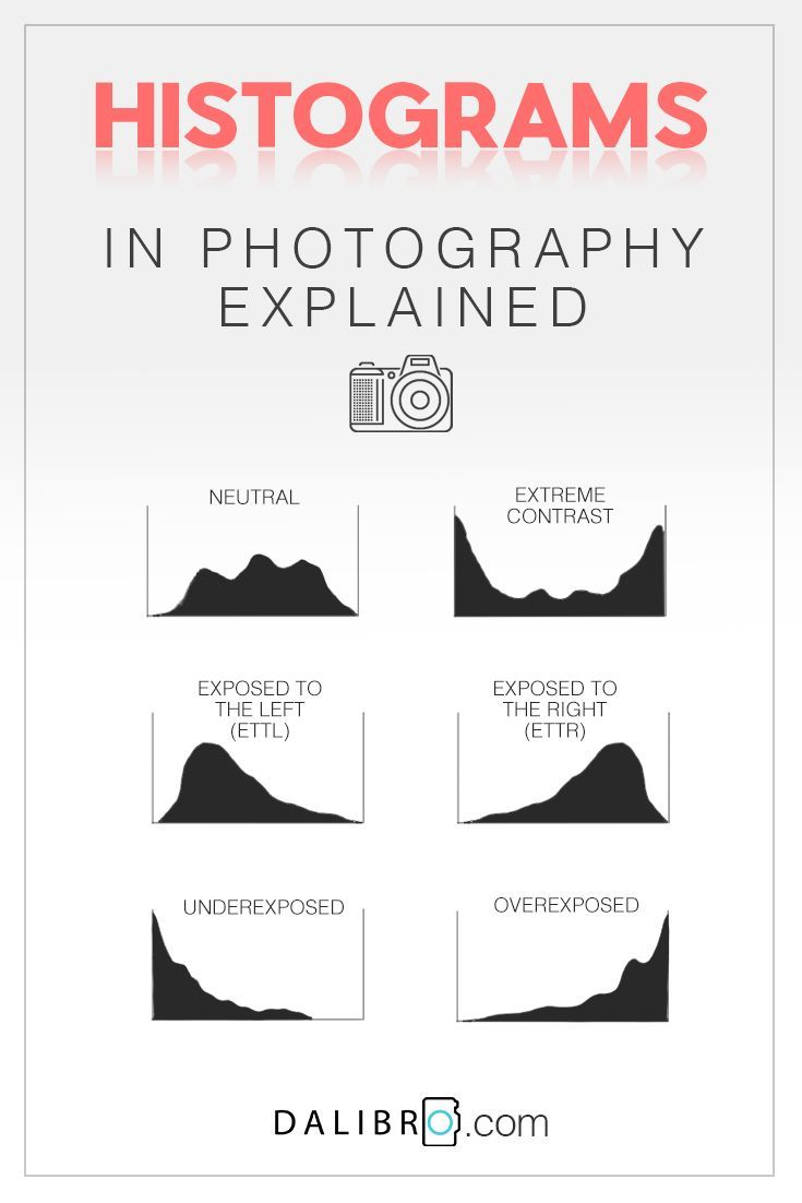 The histogram in photography simply explained | DALIBRO