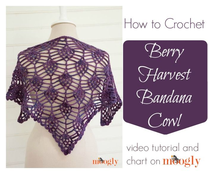 Berry Harvest Crochet Cowl: Video Tutorial and Chart! | Chal ...