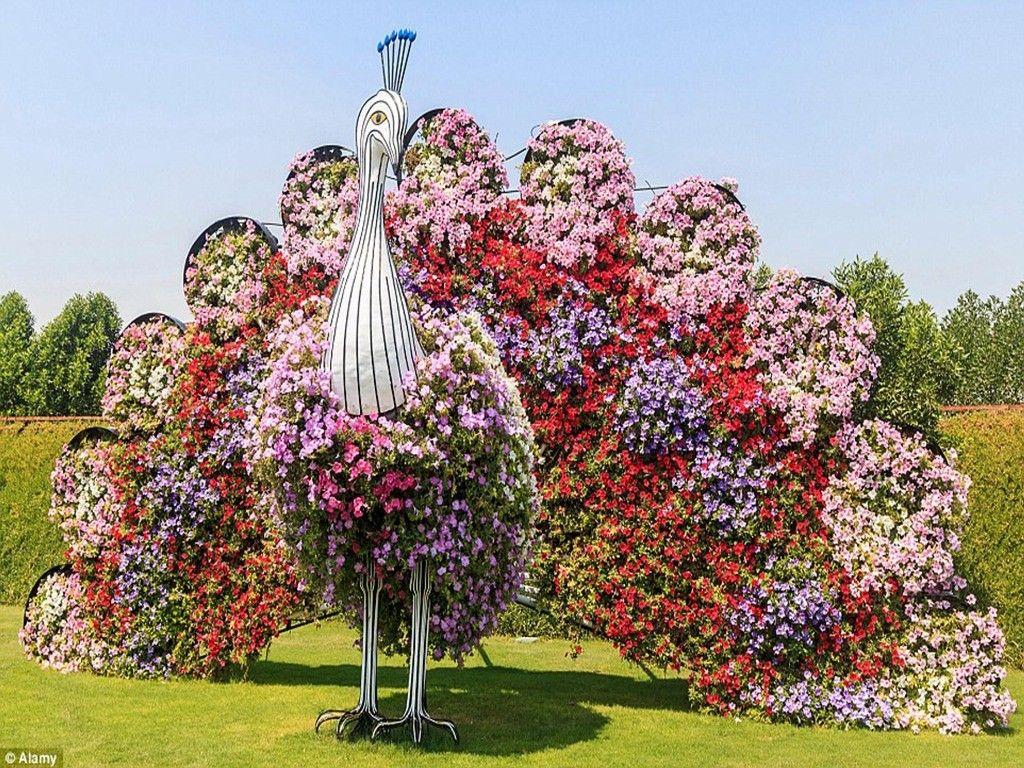 Dubai Miracle Garden (8)