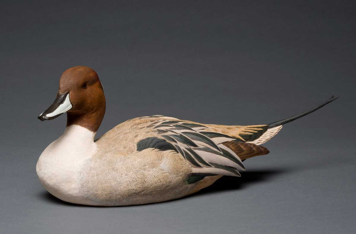 Photo of pete lupo s artwork pintail duck decoy