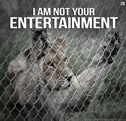 Against zoo, against circus support animal right stop