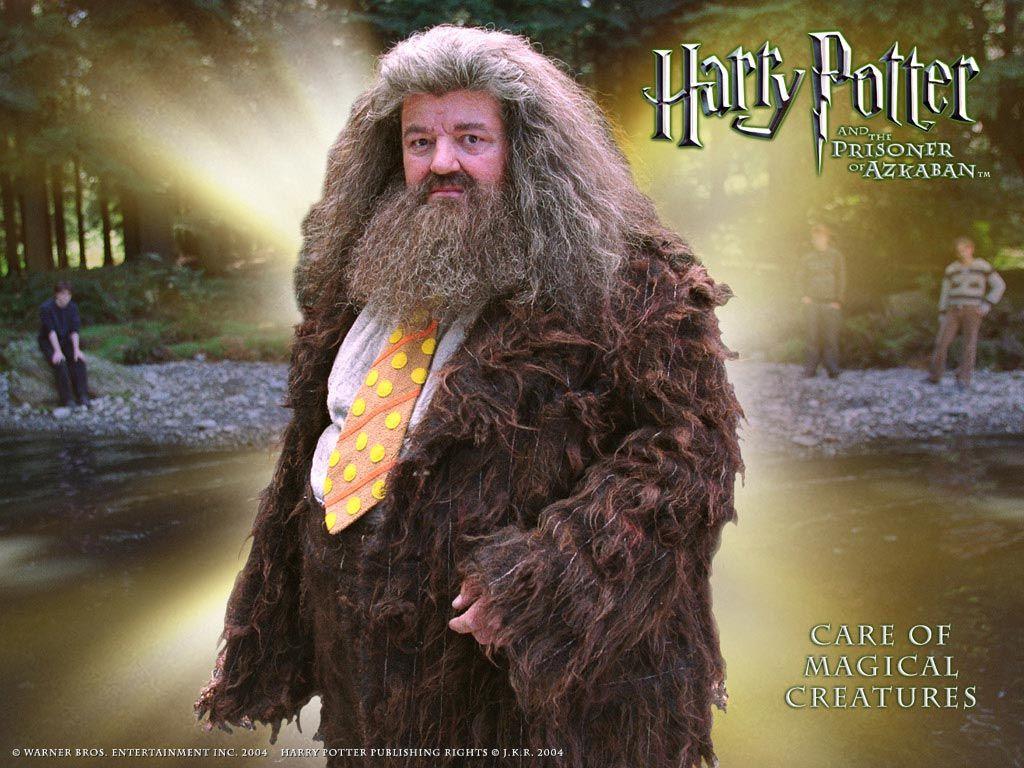 47 best Halloween Costume ideas images on Pinterest