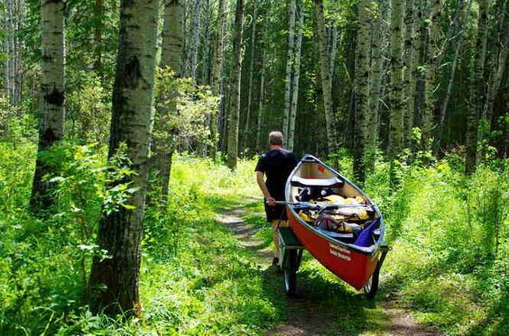 Before you even see the water you start with a 3 km portage - La la Biche canoe circuit in Alberta