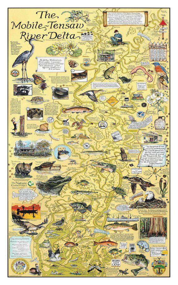 Mobile Tensaw River Delta In 2020 Map Art Map Custom Map