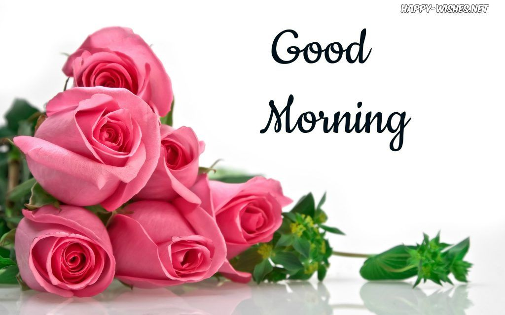 50 Good Morning Wishes With Rose Picture With Images Good