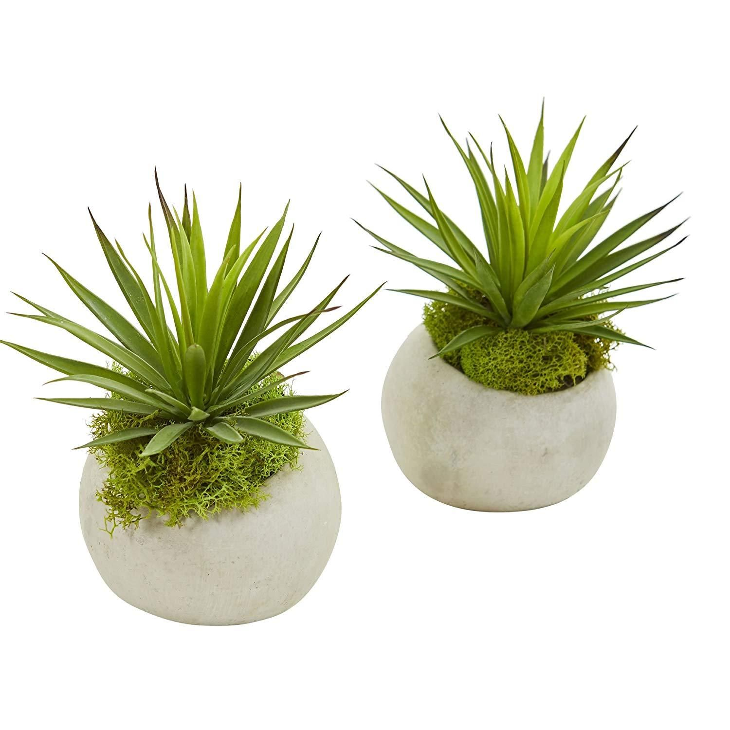 Nearly Natural 8258 S2 Spiky Agave Artificial Planter Set Of 2 Silk Plants Green Artificial Plants Agave Plant Plants