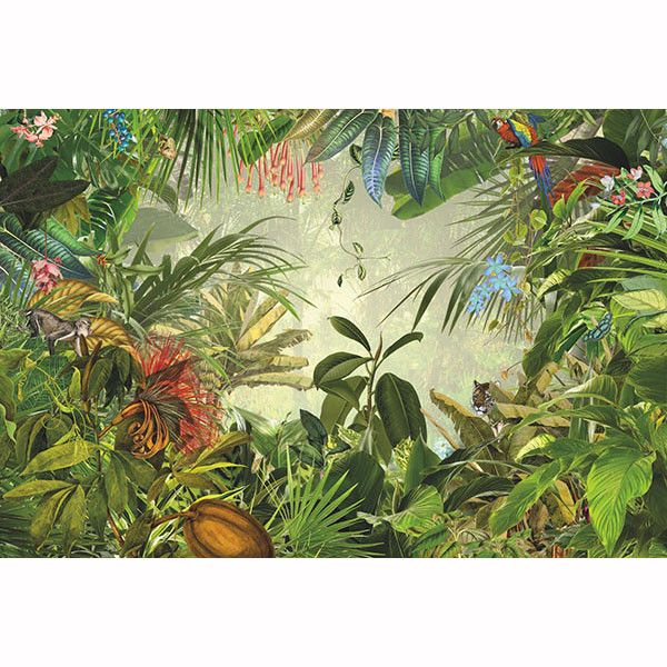 Rainforest Wall Mural Animal And Nature Themed Wallpaper That Eye