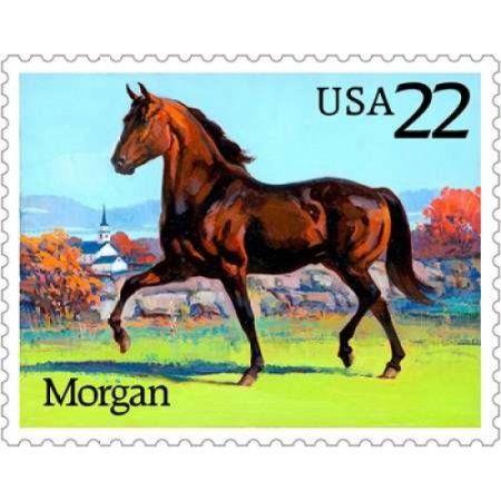Morgan Canvas Art - US Postal Service (20 x 24)