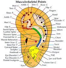 Pin på Akupunktur