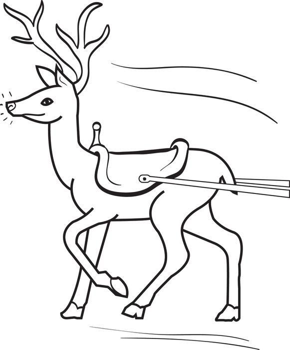 Reindeer Coloring Page 3