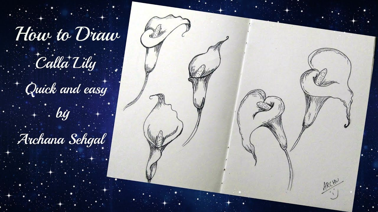 Sketchbook Diaries 1 How to draw calla lily quick and